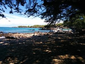 beach69